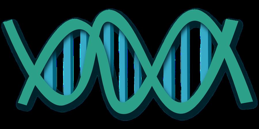 エストニアのゲノムプロジェクト