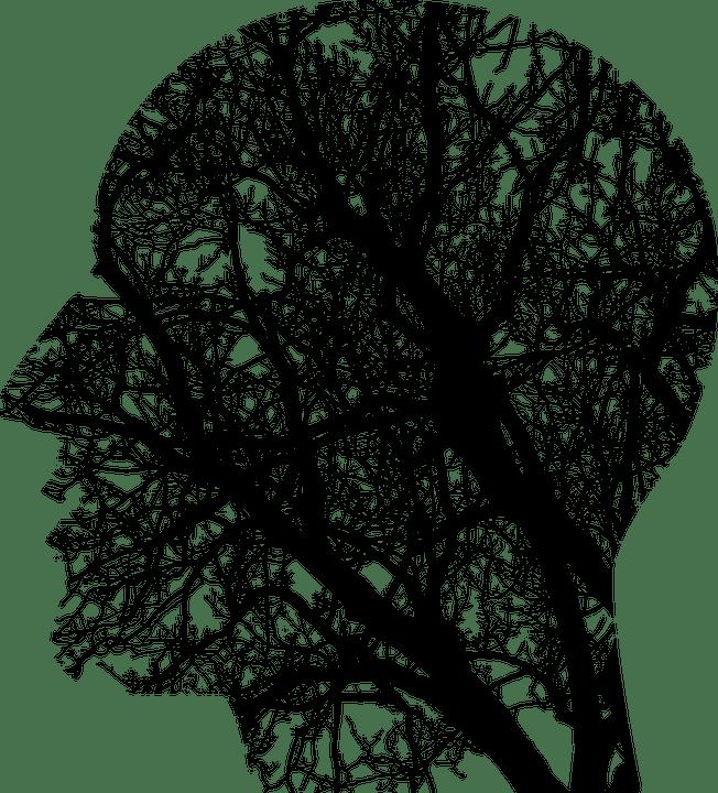 エストニアの知的財産権